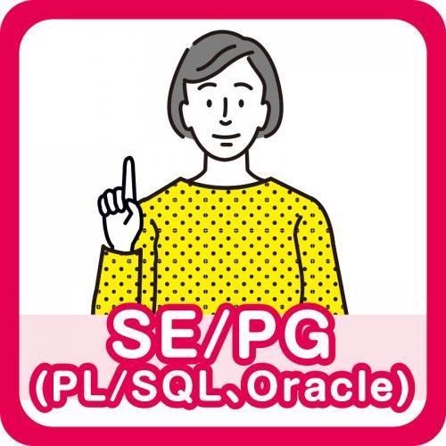 SE/PG(PL/SQL、Oracle)/株式会社パレネ