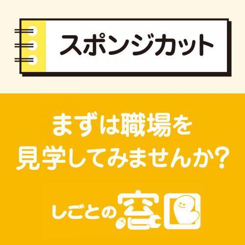 【金沢市】スポンジカット/ウイルフラップ株式会社