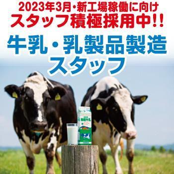 【金沢市】牛乳・乳製品製造スタッフ/株式会社ホリ乳業